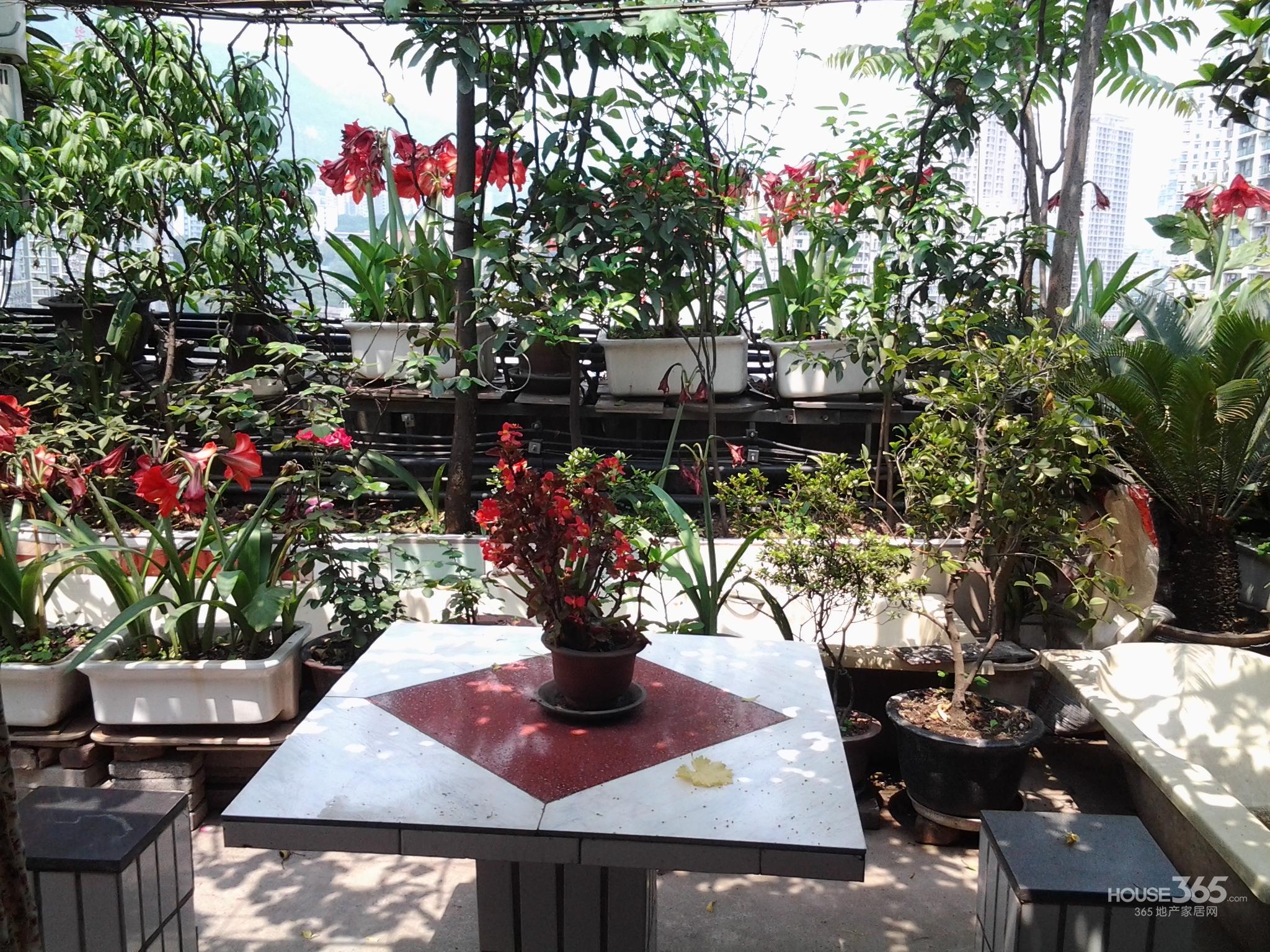该房户型三室带屋顶花园,花园面积超过40平米,种植有桂花,黄桷兰,杜鹃、玫瑰、腊梅等美丽花草;葡萄,琵琶、樱桃等水果每年皆能品尝、采摘,拥有北京四合院的韵味。配有基础的家具、电器。简单装修,可以基本满足你的日常起居,且交通便利,距离地铁站仅5分钟,距离公交车站3分钟,距离高速路口仅5分钟路程;比邻学校(附近有重庆68中学、重庆大学、西南政法大学、四川外语学院等),无污染影响;附近有重百、大中、泰豪等大中型超市,距离菜市场也仅10分钟左右路程。最优地理位置,通风采光俱佳,远离噪音潮湿困扰!希望我的房子能给你
