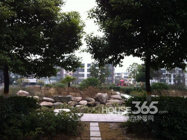 鑫苑望江花园 -合肥租房网 365租房网