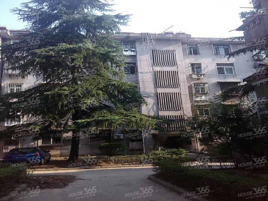 西园新村 豪装三房 拎包即住 多层五楼 随时看房 双本部学区