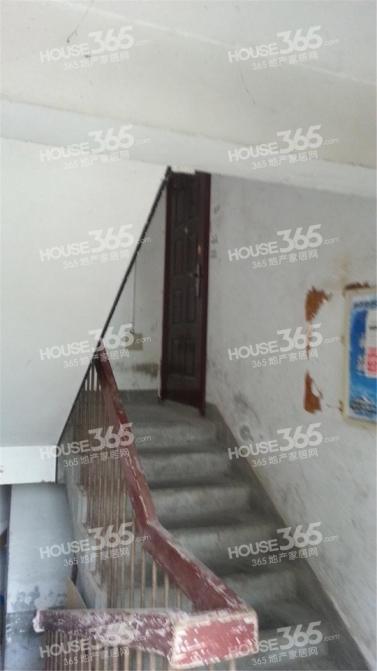 南京兴隆纺织公寓3室1厅1卫81平米精装产权房2002年建