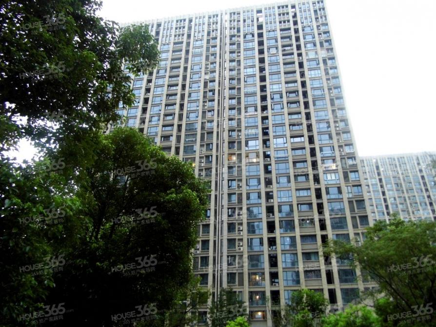 河西万达广场44平米整租精装可注册
