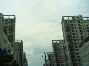 滨湖世纪城琼林苑实景图