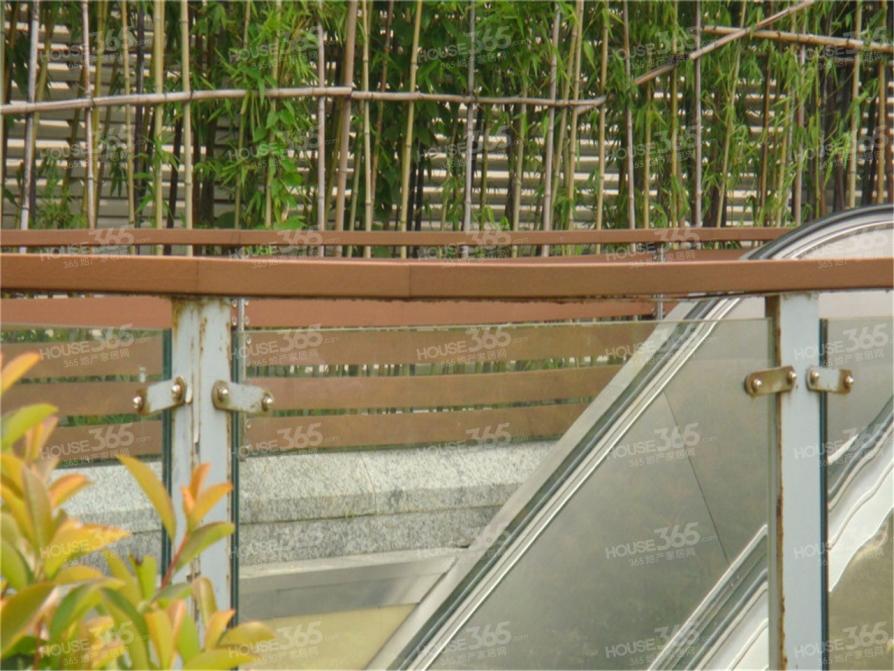茶南大街明园20平米整租简装