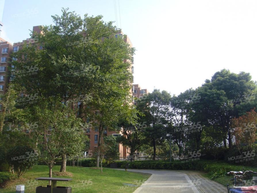 青庭国际公寓图库