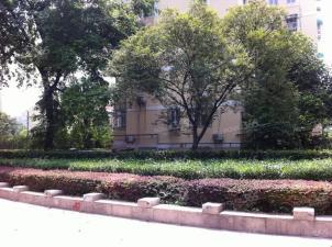 石头城 场门口 南艺 河海大学 清凉山旁 免餐饮 适合多种