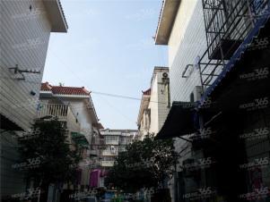 五福新村,杭州五福新村二手房租房