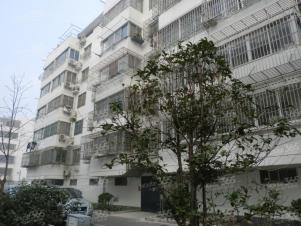 水香六村实景图