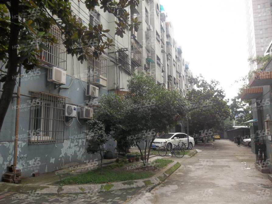 珠江路吉兆花园3室1厅1卫63.31平方产权房简装