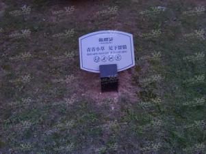 新地中心置地广场广电中心个人急租蓝蝶苑朝南阳台空